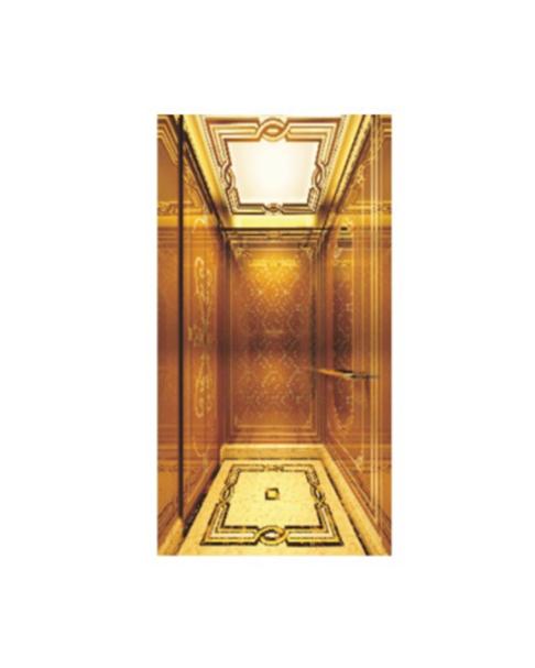 家用电梯 FH-H09